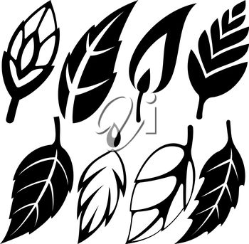 iCLIPART - Clip Art Illustration of a Set of Leaves