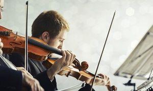 Groupon - 1 Karte für ein Konzert nach Wahl mit Werken von Vivaldi, Mozart, Chopin u.a. im Französischen Dom (50% sparen) in Französische Friedrichstadtkirche. Groupon Angebotspreis: 21€