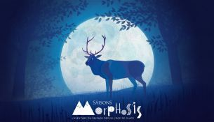Morphosis - Les Saisons