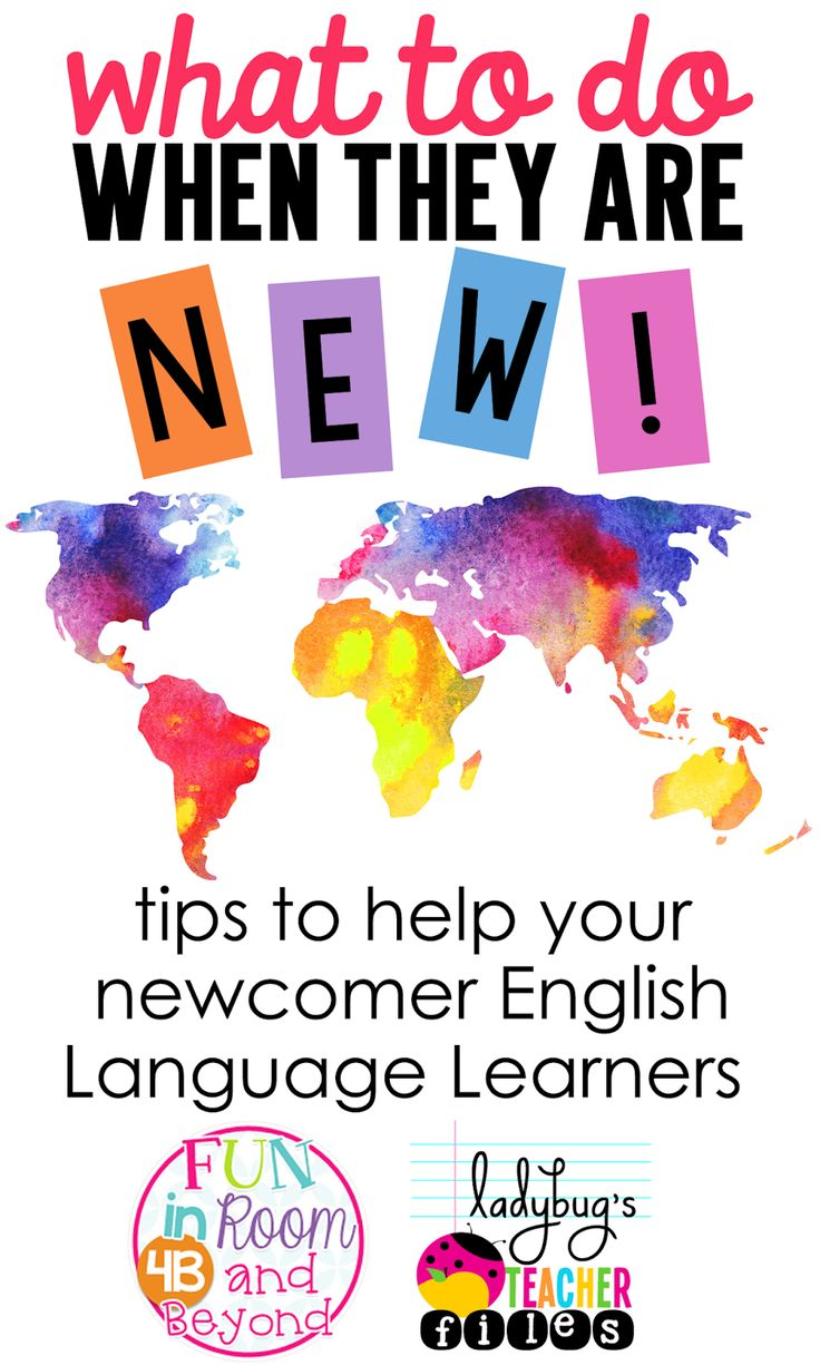 Tips to help your newcomer English Language Learners. Check the comments for excellent ideas from readers as well. $