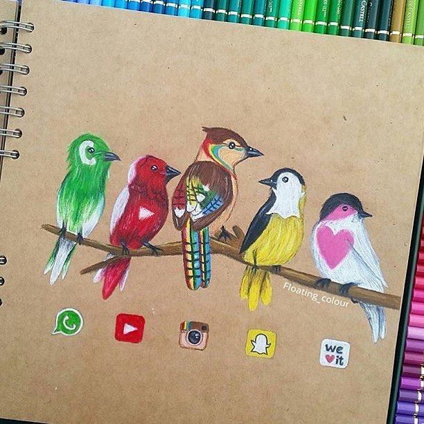 Social Media Birds  Comment Your Favorite! By @floating_colour _ @arts__gallery