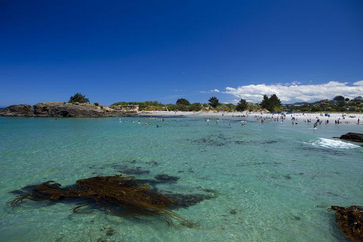 Pack a picnic in Dunedin (Brighton Beach pictured)