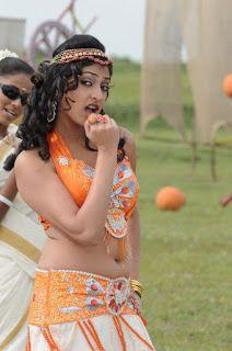 SEO Guy Enjoy: haripriya kannada actress stills