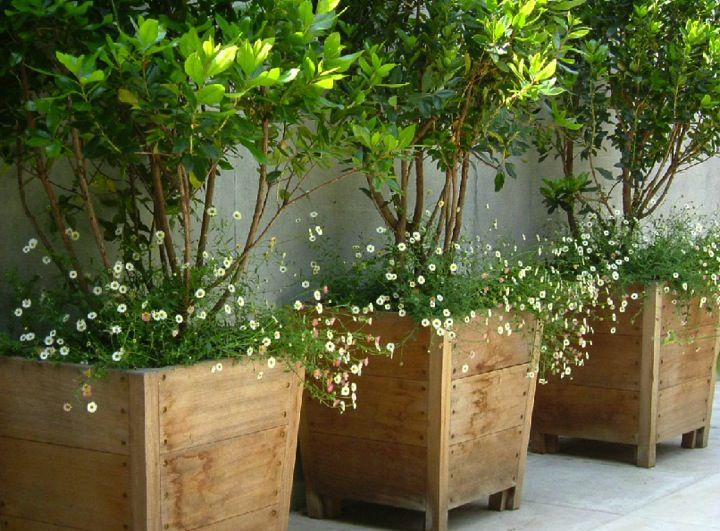 Wooden Garden Planters Ideas details about large wooden garden planter trough in decking boards free lining free gift Wood Planter Tree Box Google Search