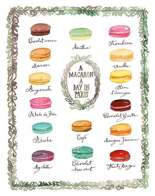 Lucile Prache, French Macaron Flavors   One Kings Lane