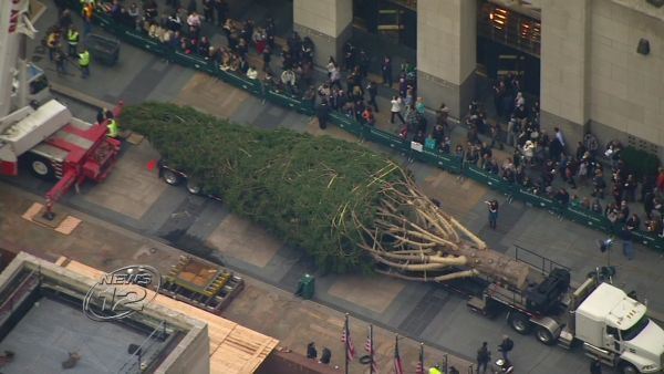 The Rockefeller Center Christmas tree arrived in Midtown Manhattan today. The 85-foot Norway spruce was