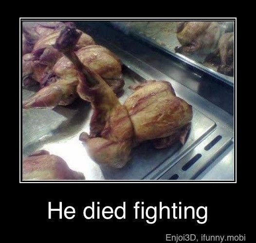 Fighter Chicken lol: Kungfu, The Fight, Kung Pao Chicken, Funny Pictures, Kung Fu, Funny Stuff, Funnystuff, Chuck Norris, Food Fight