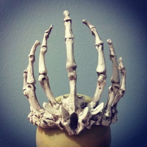 25 Best Ideas About Skull Reference On Pinterest Human