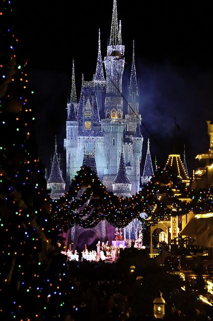 ❖ The Magic Kingdom, Florida