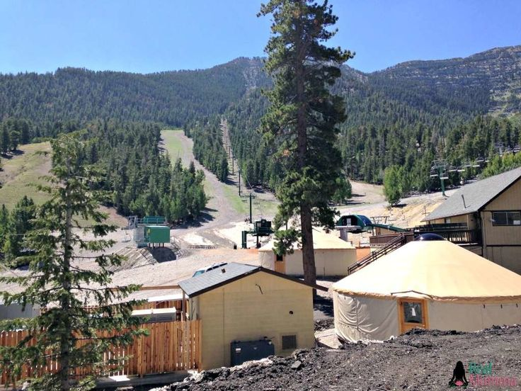 Check out the Las Vegas Ski and Snowboard Resort in the summer!