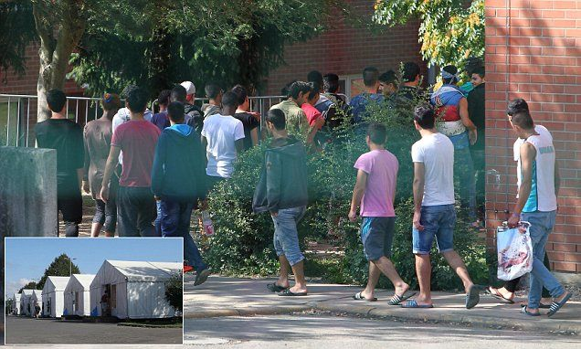 Rape and child abuse are 'rife in German asylum centres' #DailyMail