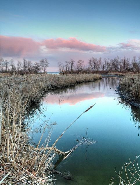 Rattray Marsh by Thankful!, via Flickr