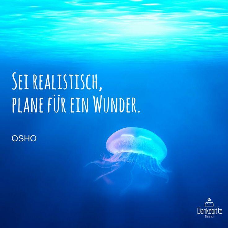 Sei realistisch, plane für ein #Wunder... #OSHO... #Dankebitte #Sprüche #Gedanken #Weisheiten #Zitate