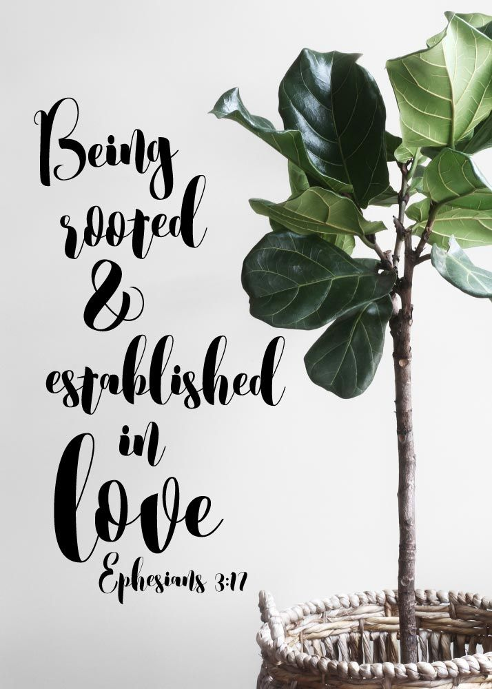 Being rooted & established in love Ephesians 3:17 God's love should be as firm in our hearts, as a tree is in the soil, whose roots strike deep into the earth. Let this print be your reminder of how powerful God's love for us is and how he wants us to love others as He loves us. -