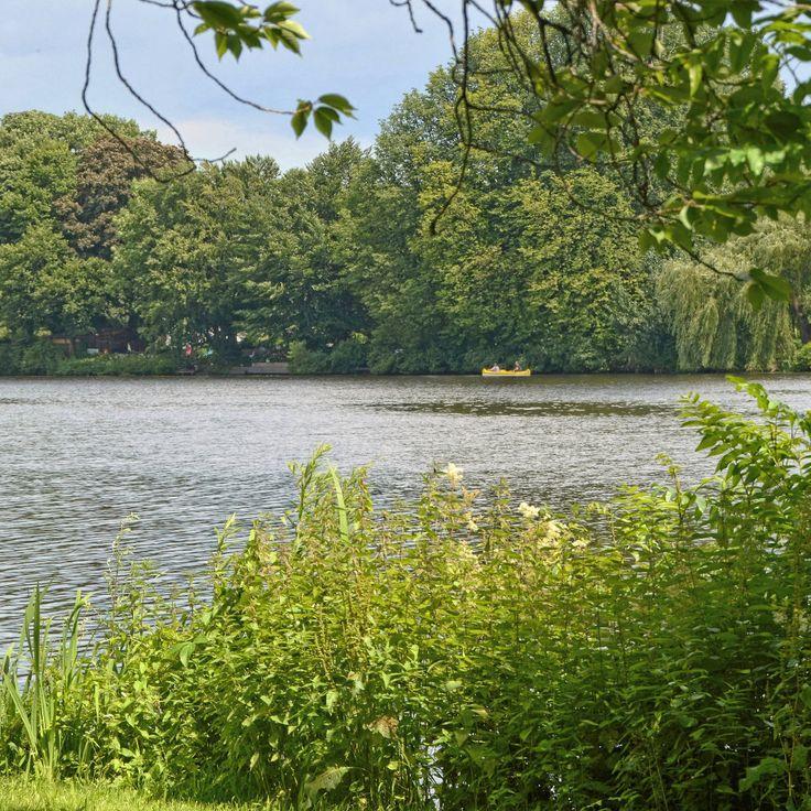 Loki Schmidt Garten: Klein Aber Fein : 5 Gründe Für Den Hayns Park In Eppendorf