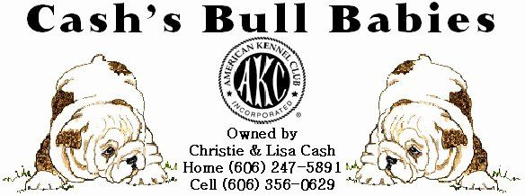 Breeding Contracts For Puppies Unique Service Contract Akc Bulldog Stud Service Akc Bulldog Giant Paper Flowers Template Puppies Contract