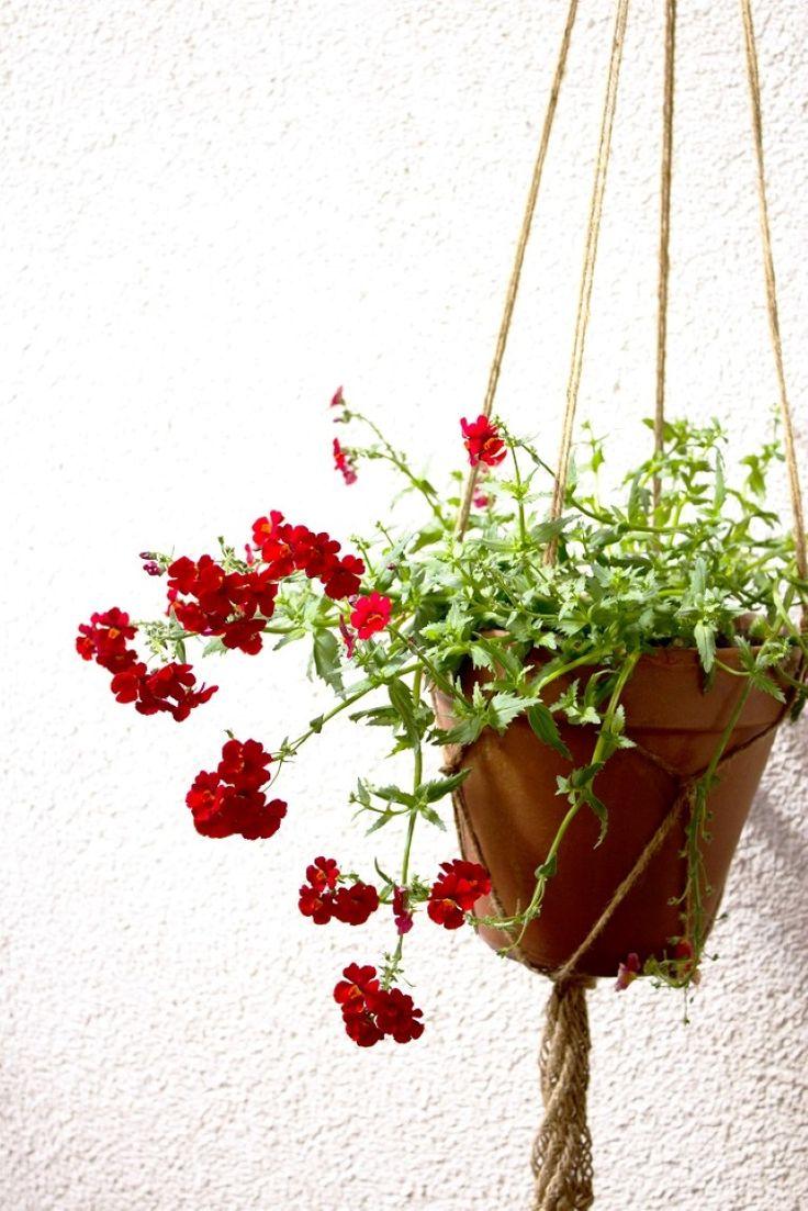 Более 25 лучших идей на тему «Blumenampel selber machen» на ...