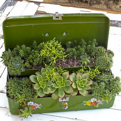 keep your eyes open for cool containers ... vintage toy trucks, lunch boxes, tool boxes, you name it ... add some easy care succulents. DONE!