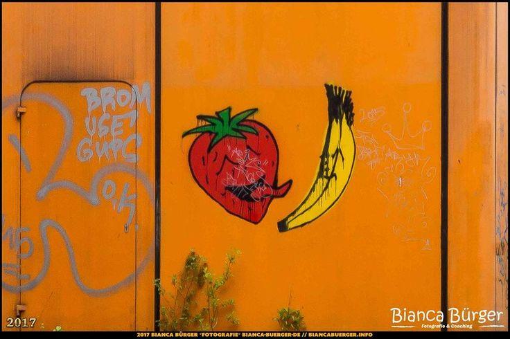 Graffiti am ehem. Diesterweg-Gymnasium (April 2017)  #Brunnenviertel #Berlin #Deutschland #Germany #biancabuergerphotography #igersgermany #igersberlin #IG_Deutschland #IG_berlincity #ig_germany #shootcamp #pickmotion #berlinbreeze #diewocheaufinstagram #berlingram #visit_berlin #Wedding #Olympus #OMD10 #olympuscamera #olympuskameras #DiesterwegGymnasium #LostPlace #biancabfoco