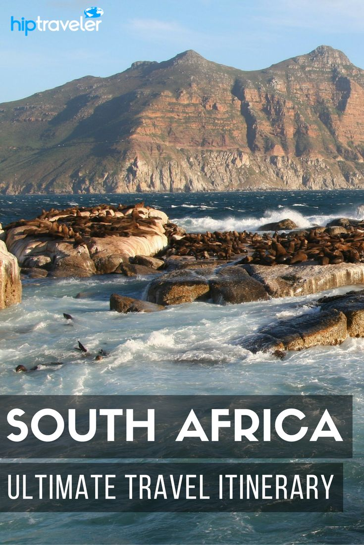 The ultimate 6-day South Africa itinerary, initially following the Garden Route with stops in Knysna and Addo Elephant Park and then ending in Stellenbosch, the Cape Winelands and Cape Town. Best things to do and see in South Africa. | Blog by HipTraveler: Bookable Travel Stories from the World's Top Travelers #SouthAfrica #Travel