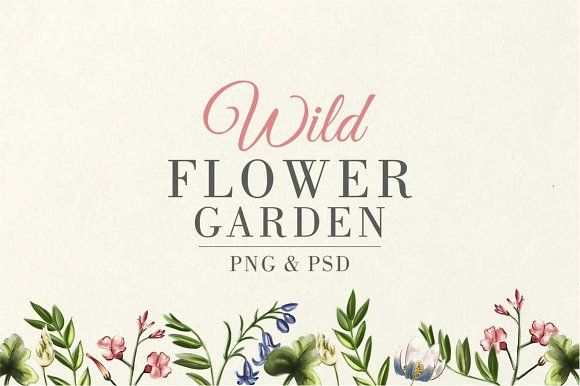 Wild Flower Garden by Storyteller Imagery on @creativemarket