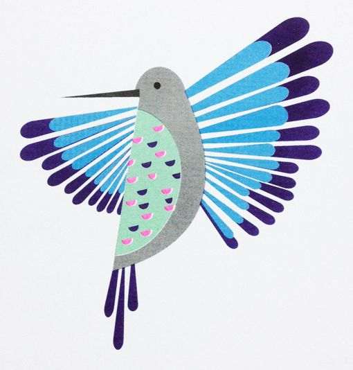 Hummingbird print from Scout Editions