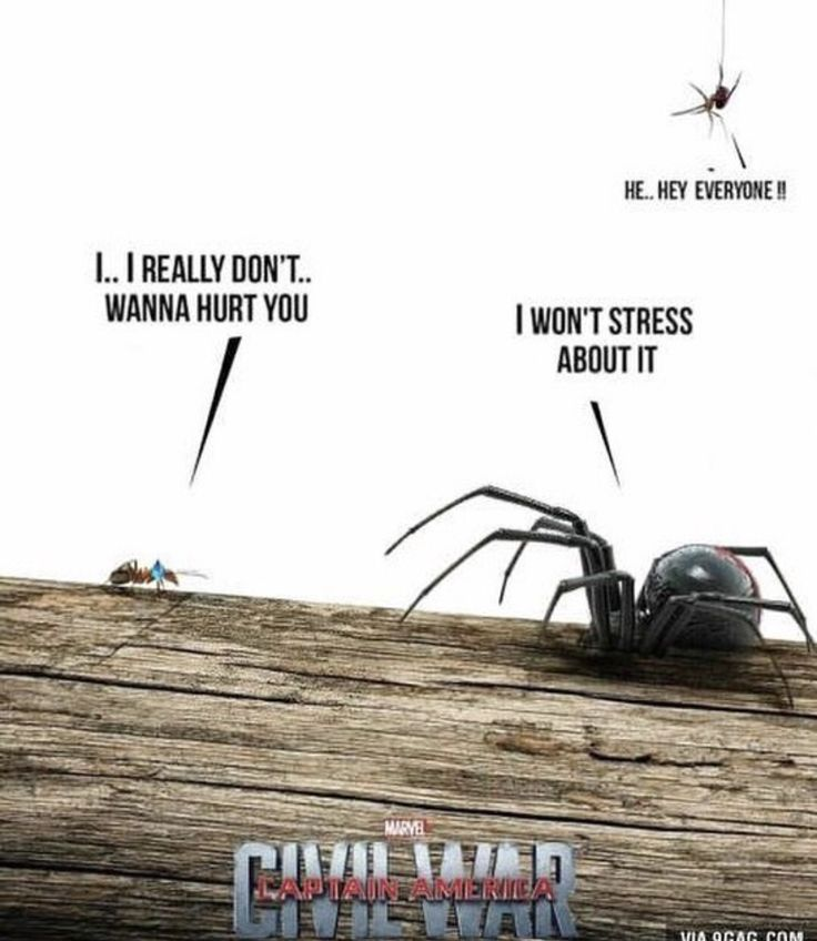 Antman vs Black Widow ... Civil War