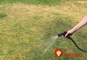 """Zničili vám trávnik domáci miláčikovia alebo sucho? Záhradník radí: Nalejte naň túto zázračnú zmes, dokáže ho """"opraviť"""" už za týždeň!"""