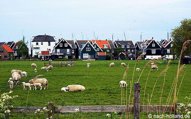 Auch ins hübsche Örtchen #Marken führt uns unsere Radtour mit #BoatBikeTours #noordholland #holland #netherlands #ijsselmeer #fahrrad #radreise