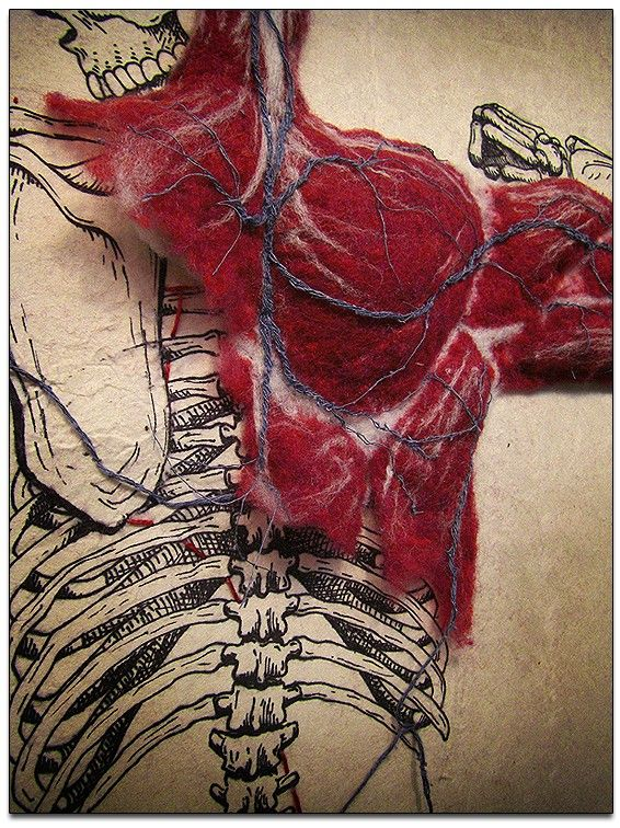 "Amazing 3D illustration of the skeletal system with muscle mass that is hand-felted onto handmade abaca paper and stitched-in cardiovascular system.    Piece is called ""Systems"" by Dan Breckermeyer"