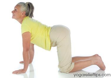 1000 images about exercises on pinterest  yoga poses