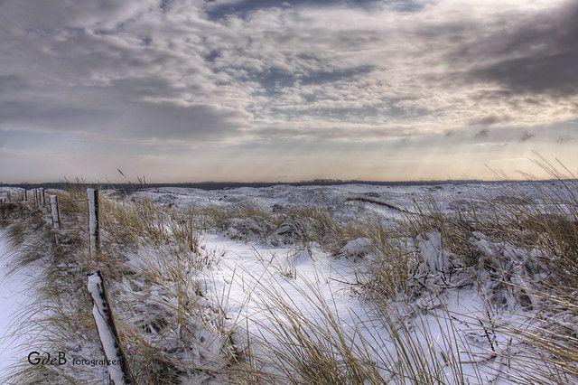 dunes | duinen
