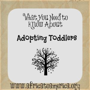 For parents adopting toddlers or older children, Carly has really nailed it in this article. Feelings and challenges expressed so well. Worth the read! #adoption www.adoptlanguage.com