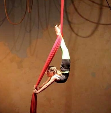 60 best aerial circus images on pinterest  aerial arts