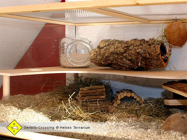 17 best images about gerbils on pinterest bunny toys toys and guinea pigs. Black Bedroom Furniture Sets. Home Design Ideas