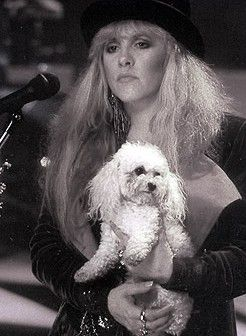 Stevie onstage holding her little white poodle, Ginny ☆♥❤♥☆