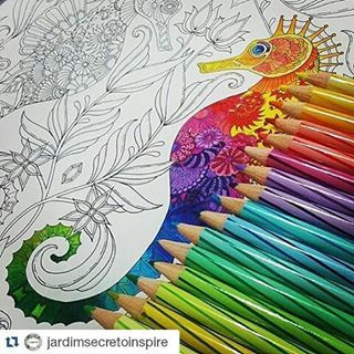 403 Best Coloring Books For Adults
