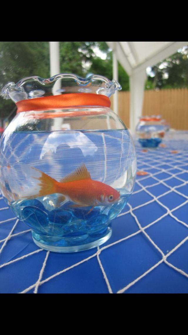 """My sons 1st birthday centerpieces! O""""fish""""ally turning one! Goldfish themed!"""