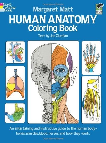 Human Anatomy Coloring Book Dover Childrens Science Books By Margaret Matt