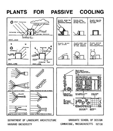 Plants for Passive Cooling | Anne Whiston Spirn | Landscape Architect