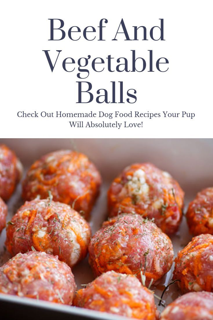 Diy Dog Food Recipes Beef And Vegetable Balls Dog Food Recipes