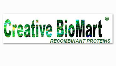 Creative BioMart Added RNA Viruses Triggered Signal Pathway to Its Signal Pathway Resource