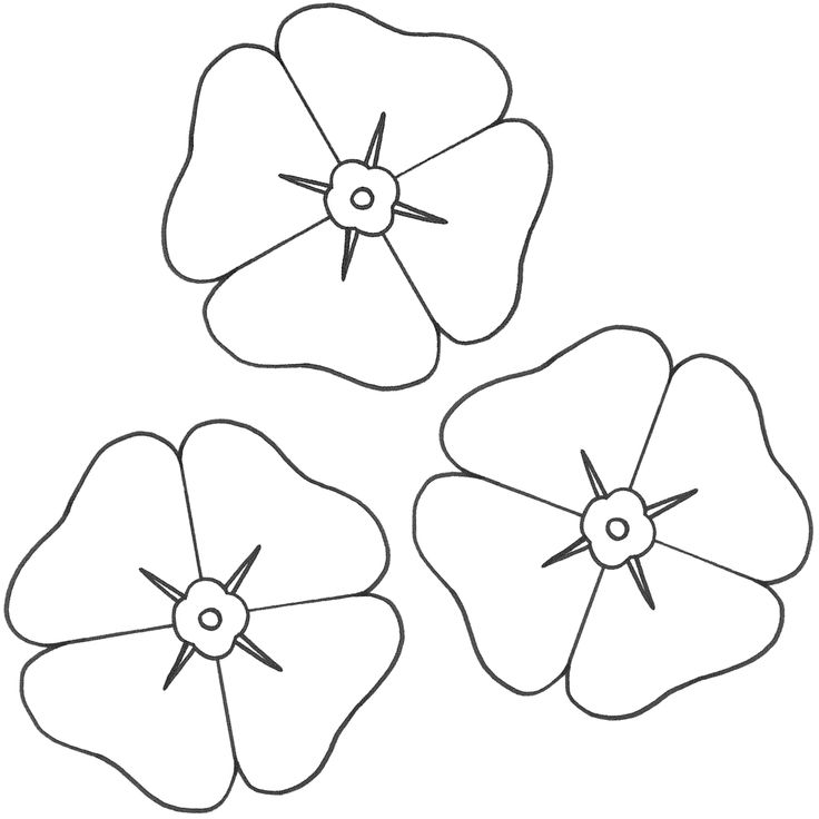 Poppies Coloring Page (Remembrance Day) Poppy coloring