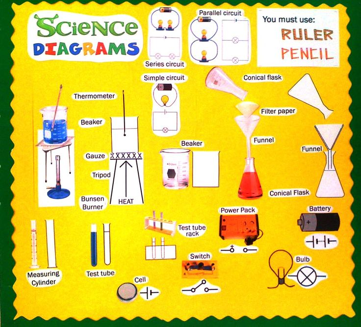 Science Classroom Design Ideas: 17 Best Images About Science Classroom Displays On