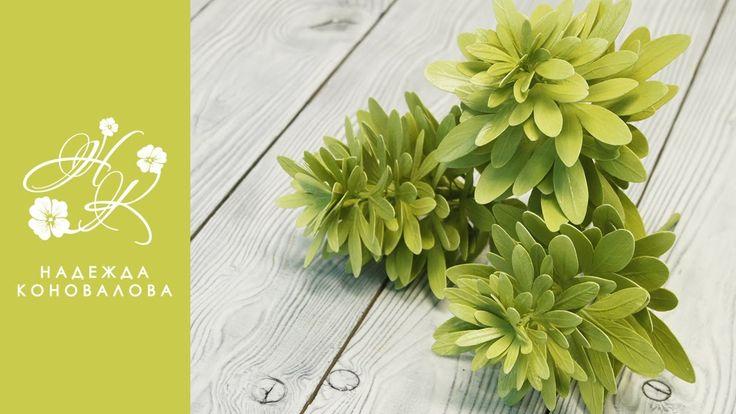 Чойсия или Шуазия тройчатая - зелень для букета из фоамирана