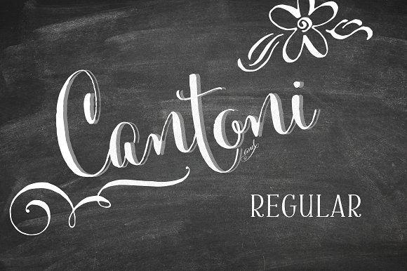 Cantoni Basic Hand Lettered Font by Debi Sementelli on @creativemarket