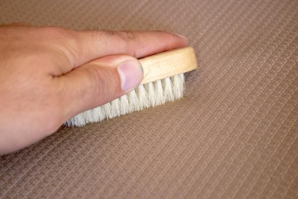 How to Clean a Couch Without Professional Cleaning | Home Guides | SF Gate