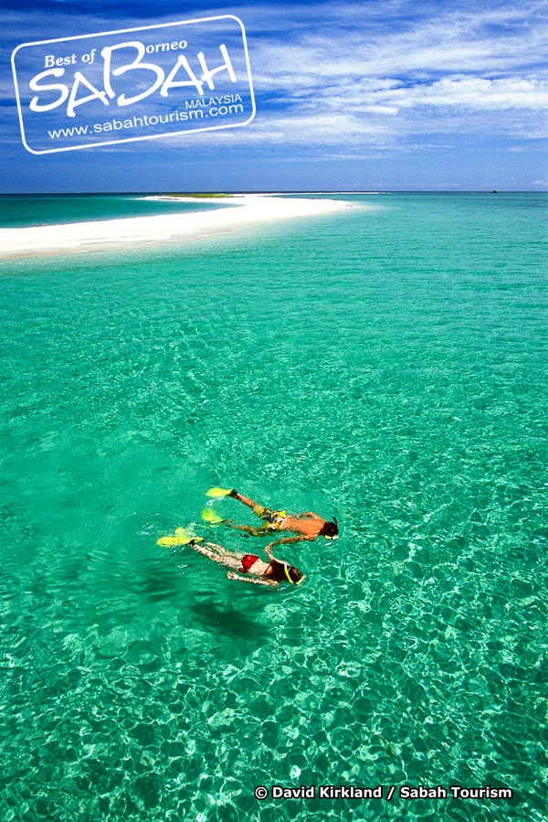 Snorkelling in Sabah! #sabah #borneo #sea #island #snorkelling