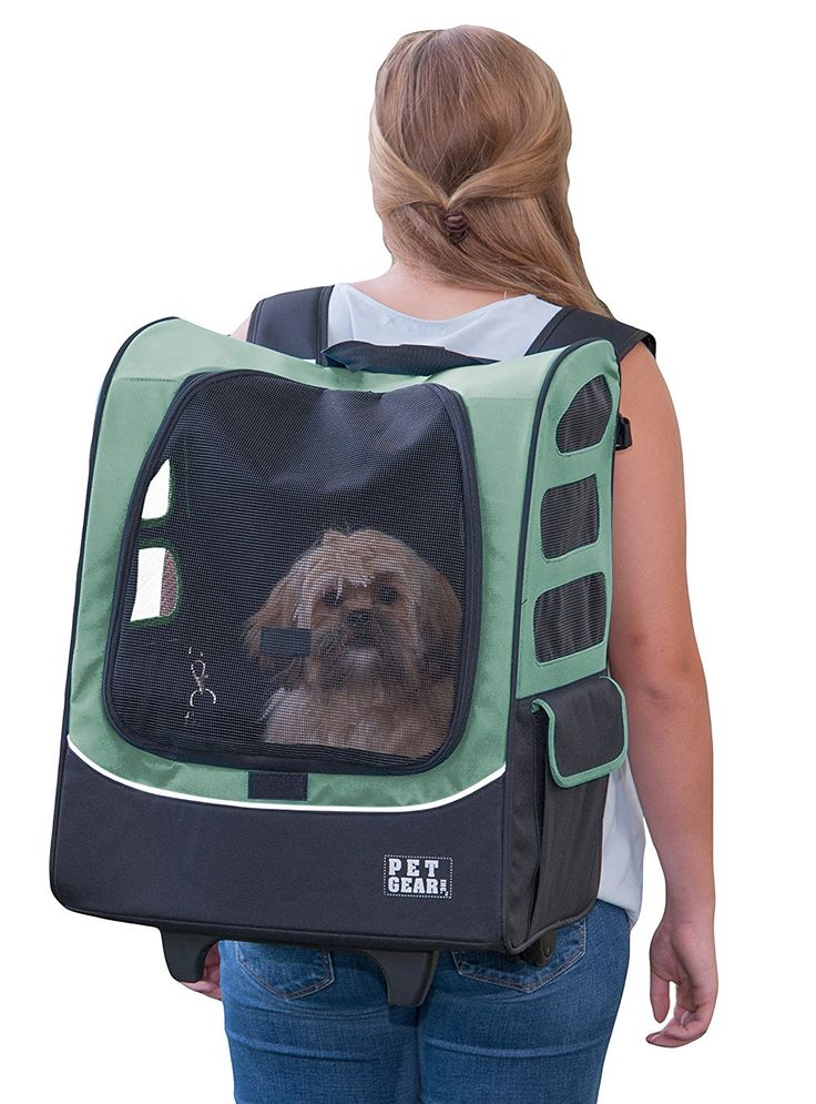 Pet Gear I-GO2 Plus Traveler Rolling Backpack Carrier for cats and dogs, Sage: Amazon.com.mx: Mascotas