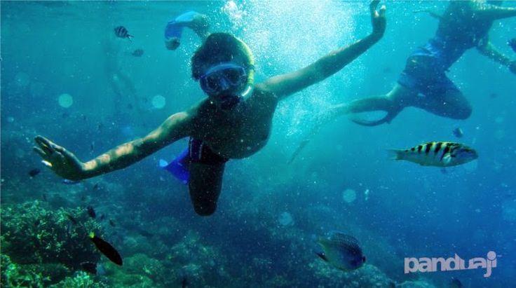 Snorkling di Pulau Kecil
